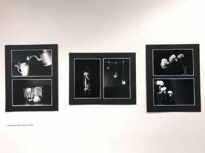 Viivi Lappalainen valokuvakokonaisuus 2019
